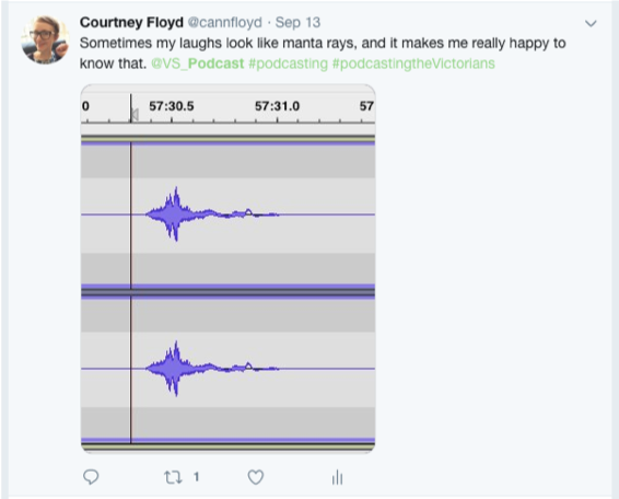 Tweet that reads 'Sometimes my laughs look like manta rays, and it makes me really happy to know that' with attached image of waveform.